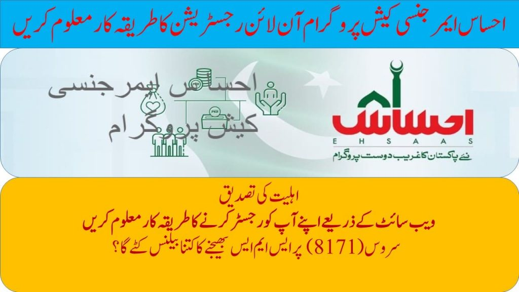 ehsaas program check cnic number